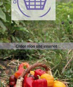 """AGROBIO 47 : atelier informatique  """"Créer votre SITE INTERNET"""" – jeudi 4.10.2018"""